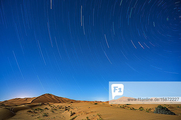 Star trails in the Sahara Desert  Morocco  North Africa  Africa