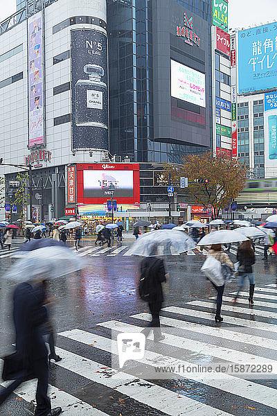 People walking across Shibuya Crossing  Shibuya  Tokyo  Honshu  Japan  Asia