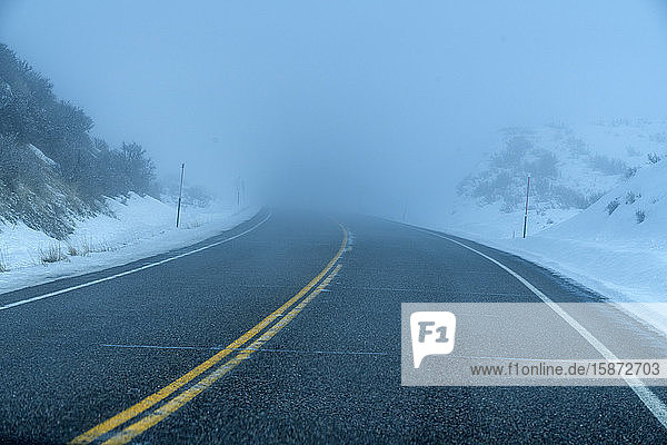 Road by snow in fog Road by snow in fog