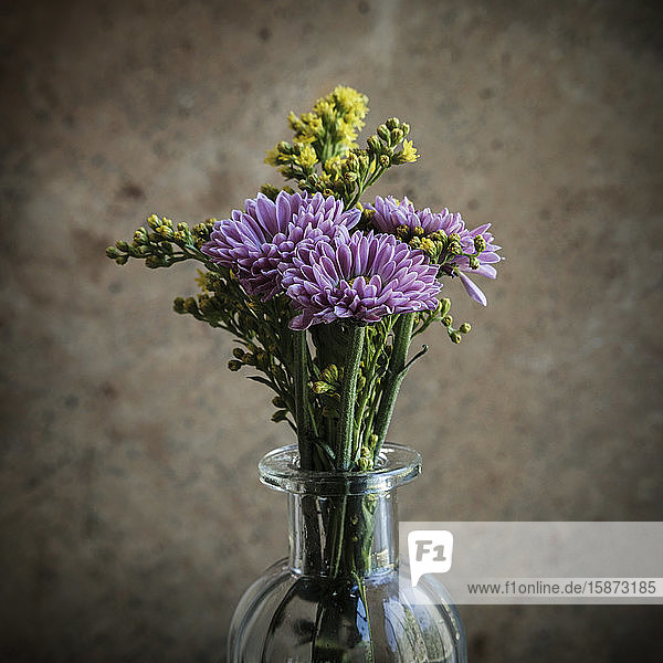 Purple flowers in vase