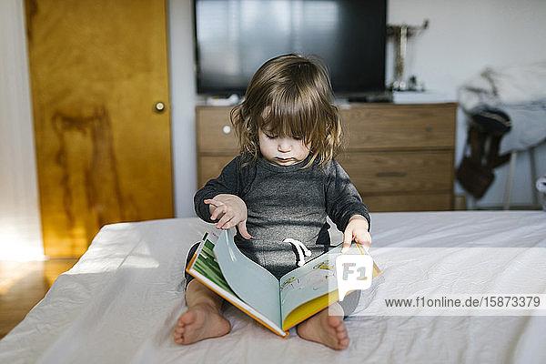 Girl (2-3) reading book on bed Girl (2-3) reading book on bed