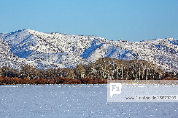 Snowy mountain in Picabo  Idaho