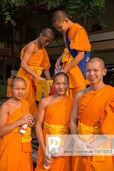 Asia  Thailand  Chiang Mai  Wat Phra Singh Temple  monks