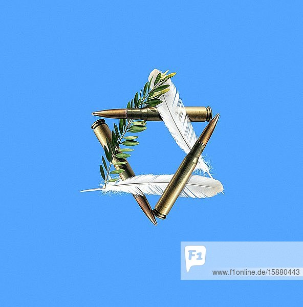 Illustration  star symbolizing the State of Israel (olive branch  dove feathers and bullets)