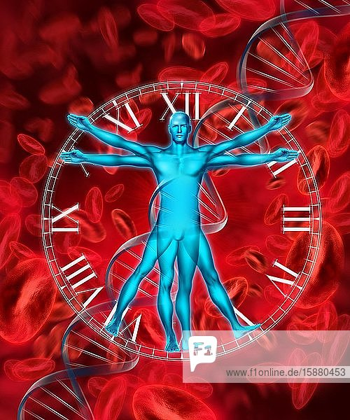 Illustration  Vitruvian Man  red blood cell and dna sequence in background