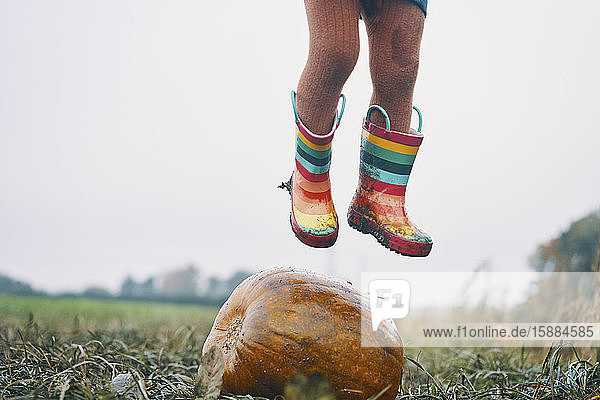 A child's feet in stripey wellies jumping over a pumpkin in a field.