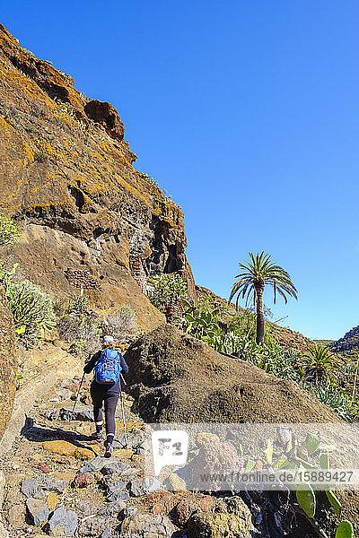 Spanien  Provinz Santa Cruz de Tenerife  San Sebastian de La Gomera  Rückansicht einer Wanderung für ältere Rucksacktouristen entlang eines felsigen Hangs am Alto de Tacalcuse