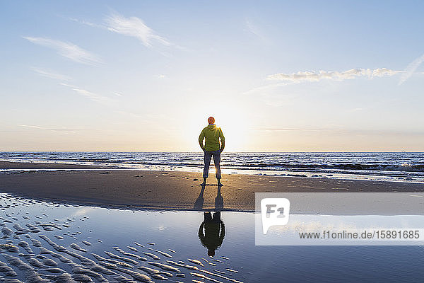 Rear view of senior man standing on shore at beach during sunset  North Sea Coast  Flanders  Belgium