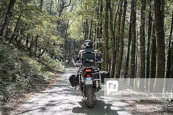 Motorradfahrer auf einer Fahrt auf einem Waldweg Motorradfahrer auf einer Fahrt auf einem Waldweg