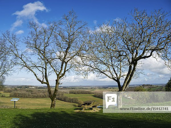 Picnic table and bare trees with view of countryside  Tourtres  Lot-et-Garonne Department  Nouvelle Aquitaine  France.
