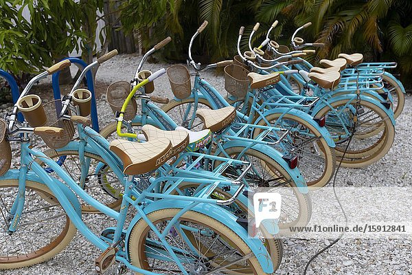 Rental bicycles for tourists  Siesta Key beach  Siesta Key  Sarasota  Florida  USA.
