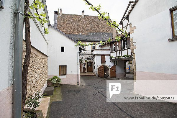 Street scenery in Mittelbergheim  a village of a region in France named Alsace on May 13  2016.