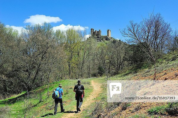 The Castle  12-13 centuries. Hikers in the Barranco del Rio Dulce Natural Park. Pelegrina town  Guadalajara province  Spain