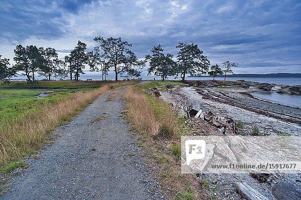 Shorline Trail at Brownie Bay  Newcastle Island Provincial Marine Park  Nanaimo  British Columbia  Canada.