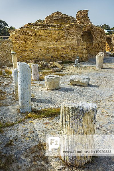 Roman ruins. Baths of Antoninus. Carthage. Tunisia  Africa.