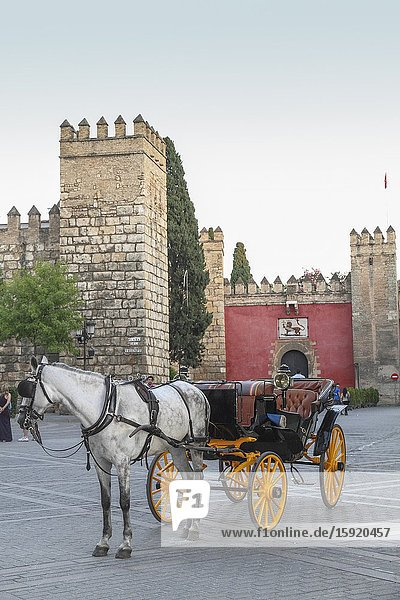Horse carriage next La Alcazaba Seville Andalusia Spain