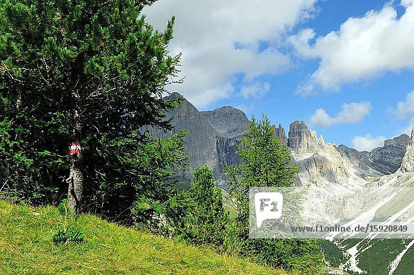 The Rosengarten or Catinaccio group in the Dolomites. They are a mountain range declared a UNESCO World Heritage Site. Trentino province  Italy