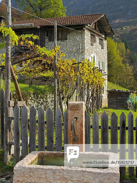 Moline near San Lorenzo in Banale in the Dolomiti di Brenta. Europe  Italy  Trentino.
