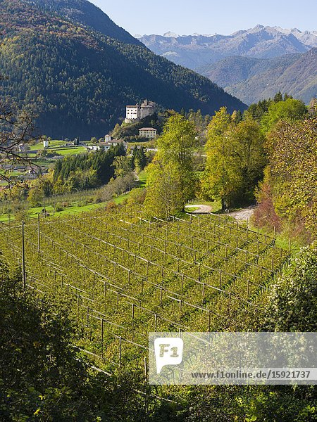 Stenico in the Dolomiti di Brenta  part of UNESCO world heritage Dolomites. Europe  Italy  Trentino