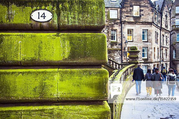 Green moss on typical wall  Old town of Edinburgh  Scotland  United Kingdom  Europe.