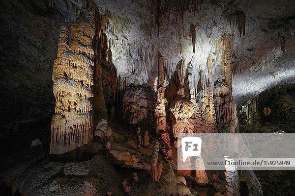 Postojna Cave  near Postojna  southwestern Slovenia  Europe