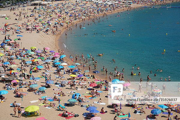 The Tossa beach  Tossa de Mar  Costa Brava  Catalonia  Spain  Europe