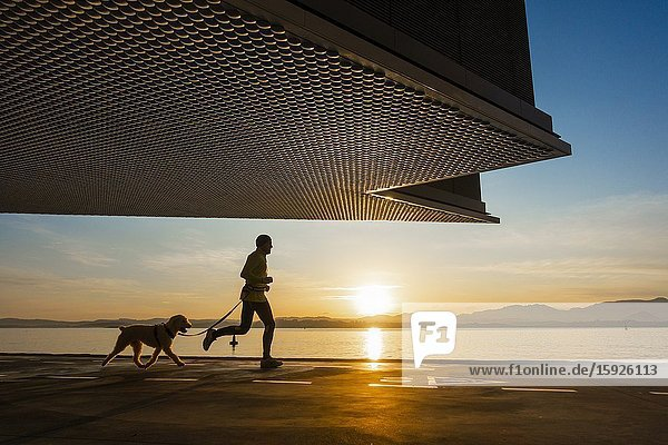 Santander  Cantabria  Spain. Jogger with dog at sunrise under Centro Botín art gallery  designed by Pritzker Prize-winner architect Renzo Piano.