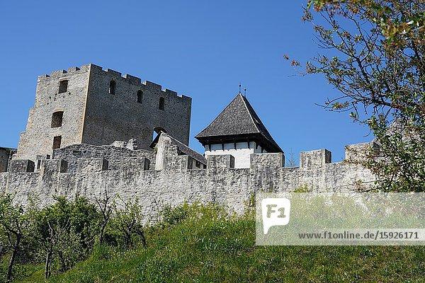 Celje Castle  Styria  Slovenia  Europe
