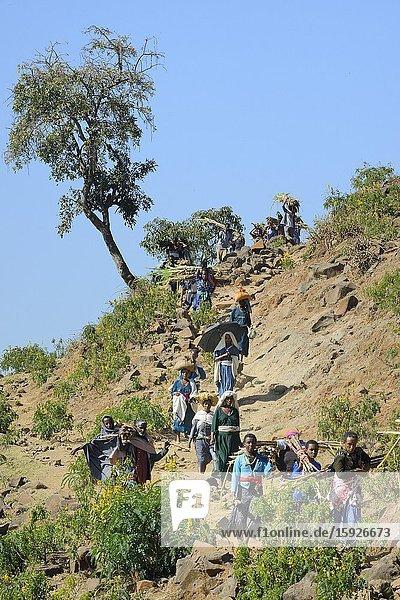 Ethiopia  Bahir Dar region  Blue Nile falls surroundings  On the way to Tissisat market.