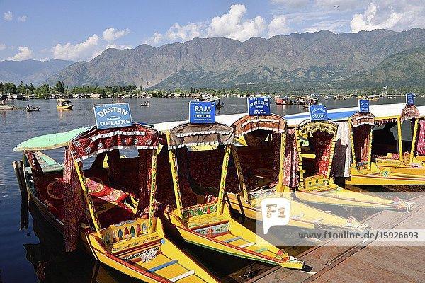 India  Jammu & Kashmir  Srinagar  Shikara parking at Dal lake.