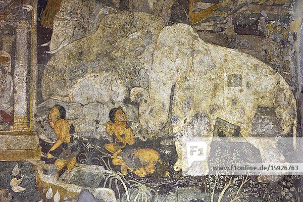 India  Maharashtra  World Heritage Site  Ajanta  Cave 17 (6th C) Shaddanta Jataka:tale :Six tusked elephant giving away his tusks.