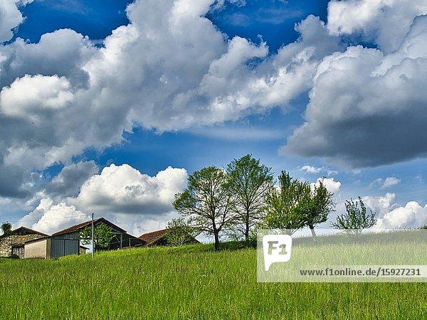 Farm buildings and grassy field  Lauzun  Lot-et-Garonne Department  Nouvelle Aquitaine  France.