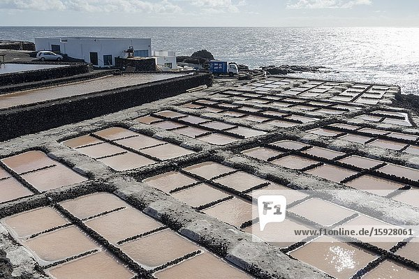 La Palma  Canary Islands Spain- salt works Salinas de Fuencaliente.