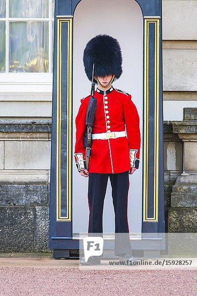 Foot guards Buckingham Palace London England United Kingdom Capital River Thames UK Europe EU.