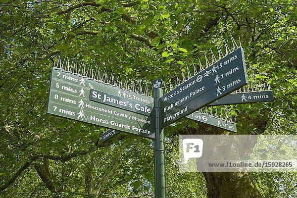 Direction sign St. James Park Westminster London England United Kingdom Capital River Thames UK Europe EU.