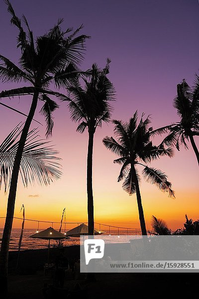 Silhouetted palms at sunset  Seseh Beach  Bali  Indonesia.