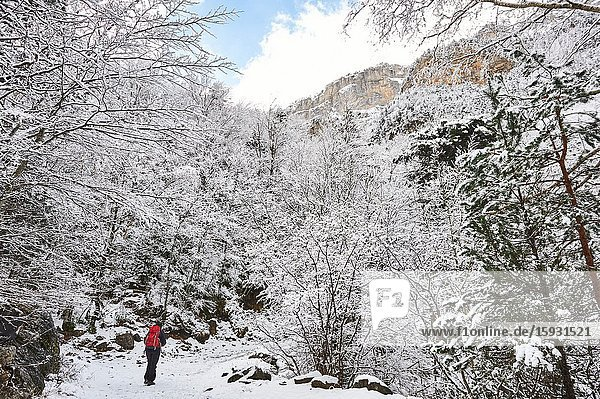 Pyrenees: a woman hiking along snowy path in the National park of Ordesa and Monte Perdido (Huesca province  Aragon region  Spain)