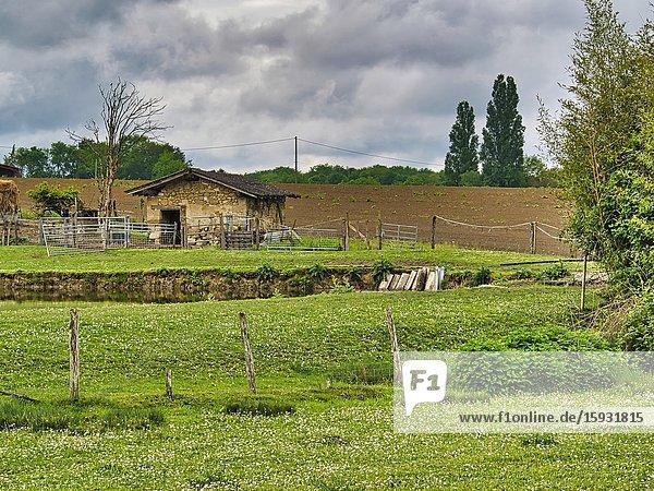 Farm near Lauzun  Lot-et-Garonne Department  Nouvelle Aquitaine  France.