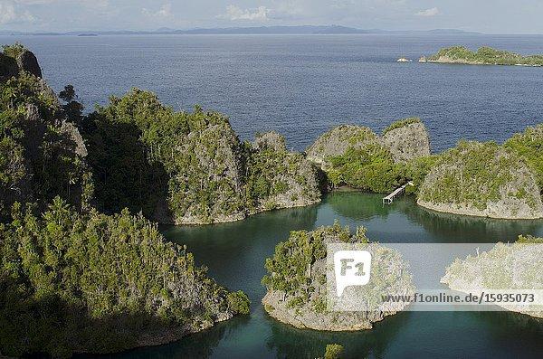 Pianemo Viewpoint  Pianemo Island  near Waigeo Island  Raja Ampat  Indonesia.
