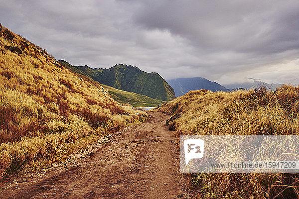 Beach  Ka'ena Point State Park  Oahu  Hawaii  USA