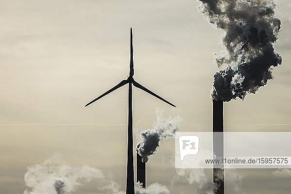 Windkraftrad und rauchende Schornsteine am Uniper Steinkohlekraftwerk Scholven  im Gegenlicht  Gelsenkirchen  Ruhrgebiet  Nordrhein-Westfalen  Deutschland  Europa