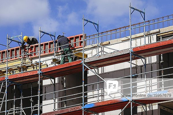 Construction worker on scaffolding  new construction of apartment buildings construction site  Essen  North Rhine-Westphalia  Germany  Europe