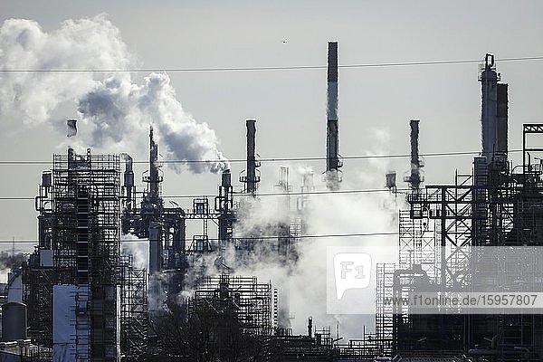 BP Ruhr Oel Oil Refinery  Scholven Plant  Gelsenkirchen  Ruhr Area  North Rhine-Westphalia  Germany  Europe