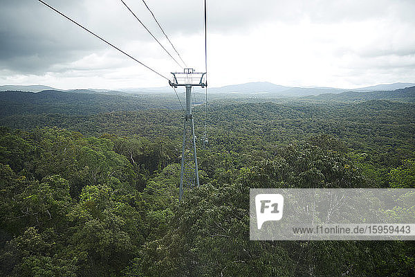 Skyrail Rainforest Cableway running above the Barron Gorge National Park  in the Wet Tropics of Queensland's World Heritage Area  Cairns  Australia.