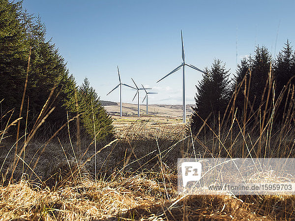 Wind turbines on a wind farm in rural Ulster  Northern Ireland.