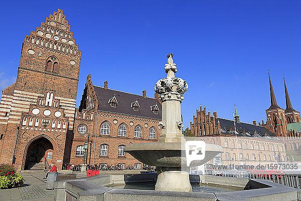Universität  Roskilde  Seeland  Dänemark  Skandinavien  Europa