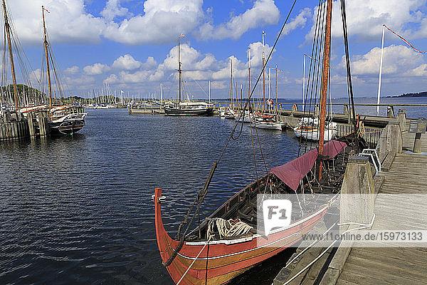 Wikingerschiffsmuseum  Roskilde  Seeland  Dänemark  Skandinavien  Europa
