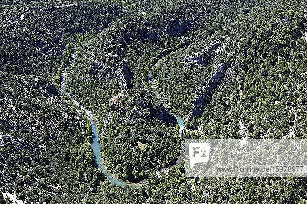 Spain  Province of Guadalajara  Aerial view of Tagus river winding across forested valley in AltoTajoNature Reserve