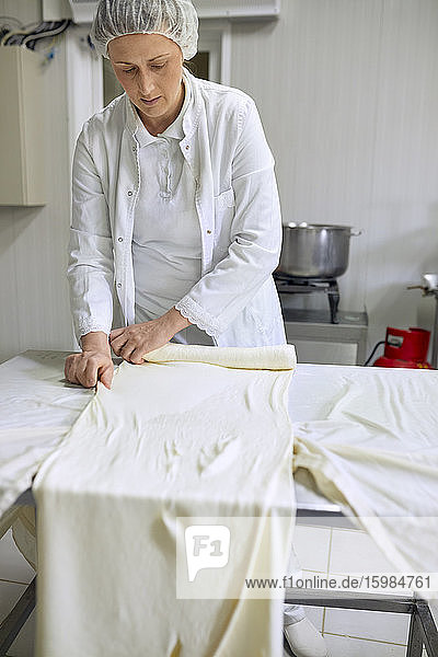 Cheese production  female worker rolling cheese  rolled layered cheese Cheese production, female worker rolling cheese, rolled layered cheese