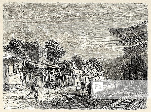Daily life  old landscape view city of Port Louis  Mauritius Island. Mascarene Islands South Africa  Old 19th century engraved illustration  Le Tour du Monde 1863.